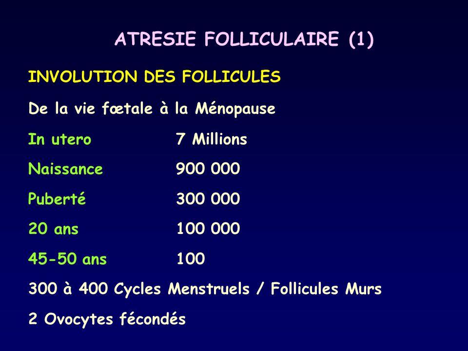 ATRESIE FOLLICULAIRE (1) INVOLUTION DES FOLLICULES De la vie fœtale à la Ménopause In utero7 Millions Naissance900 000 Puberté300 000 20 ans100 000 45