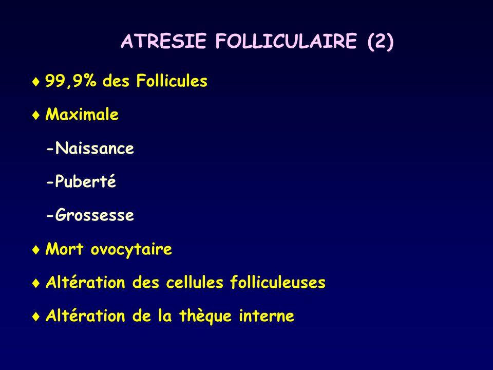 ATRESIE FOLLICULAIRE (2)  99,9% des Follicules  Maximale -Naissance -Puberté -Grossesse  Mort ovocytaire  Altération des cellules folliculeuses 