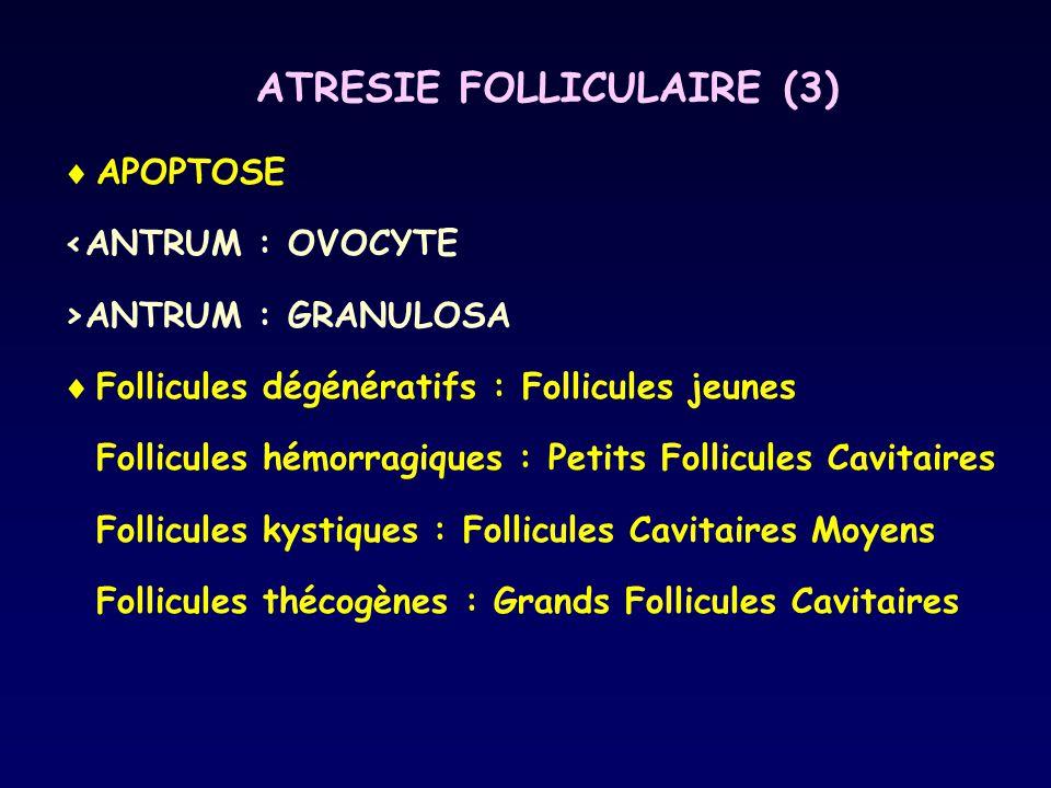 ATRESIE FOLLICULAIRE (3)  APOPTOSE <ANTRUM : OVOCYTE >ANTRUM : GRANULOSA  Follicules dégénératifs : Follicules jeunes Follicules hémorragiques : Pet
