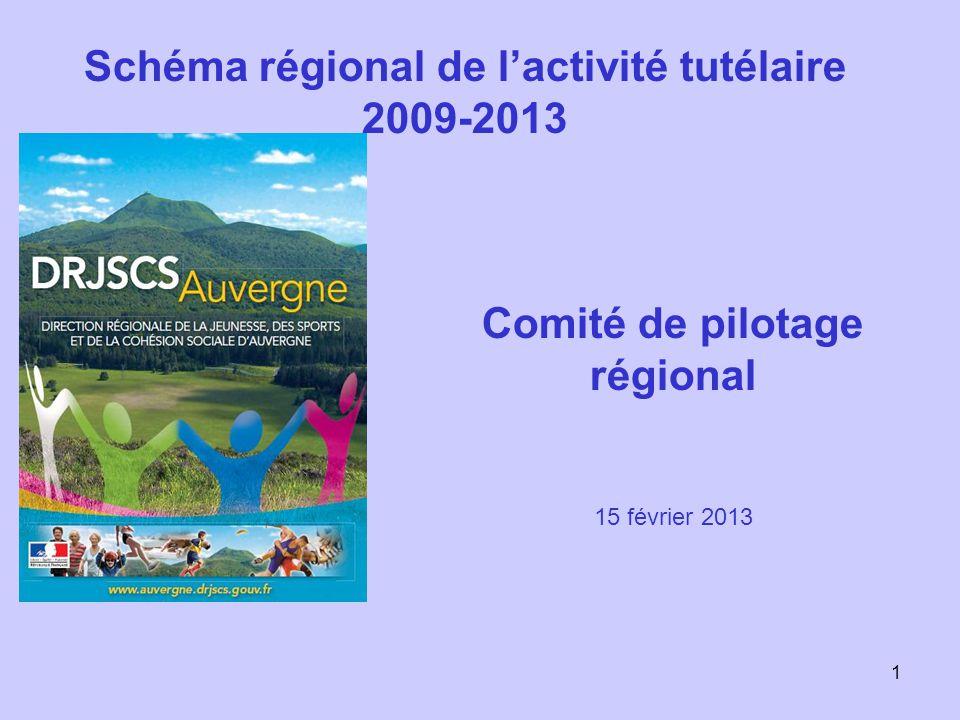 1 Schéma régional de l'activité tutélaire 2009-2013 Comité de pilotage régional 15 février 2013