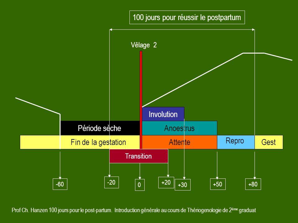 Prof Ch. Hanzen 100 jours pour le post-partum. Introduction générale au cours de Thériogenologie de 2 ème graduat Involution Attente Anoestrus Période