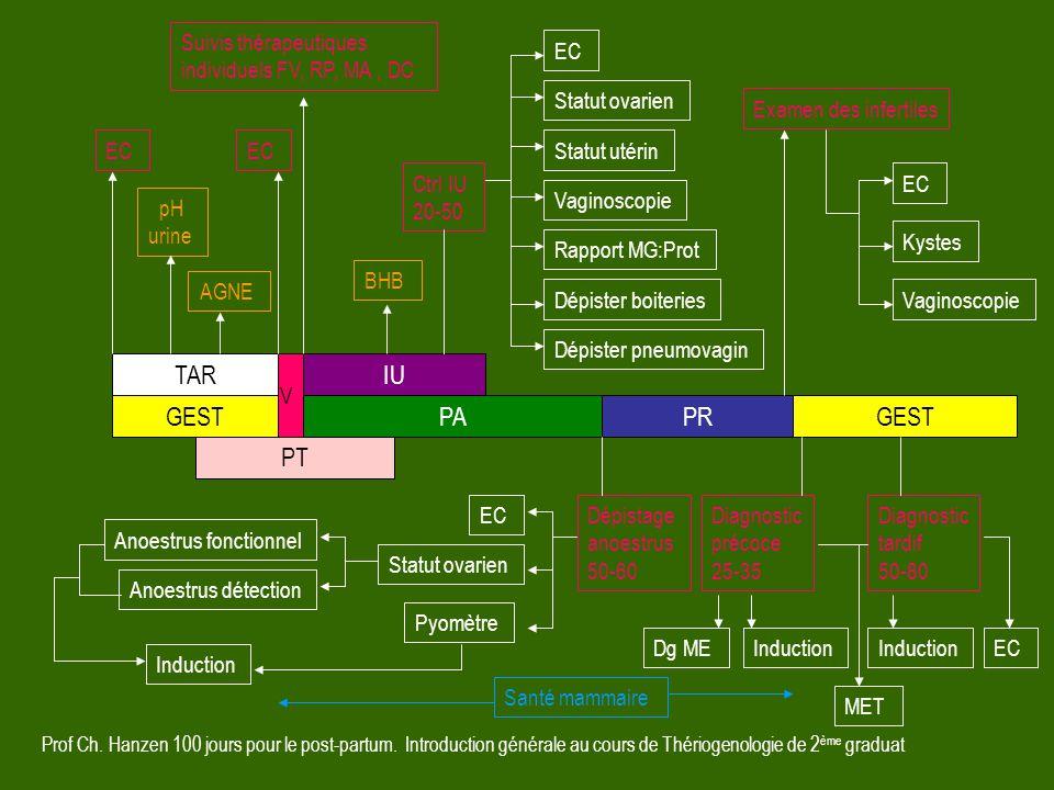 Prof Ch. Hanzen 100 jours pour le post-partum. Introduction générale au cours de Thériogenologie de 2 ème graduat GESTPAPRGEST IUTAR EC Ctrl IU 20-50