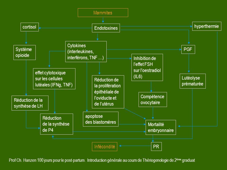 Prof Ch. Hanzen 100 jours pour le post-partum. Introduction générale au cours de Thériogenologie de 2 ème graduat Mammites Endotoxines Compétence ovoc