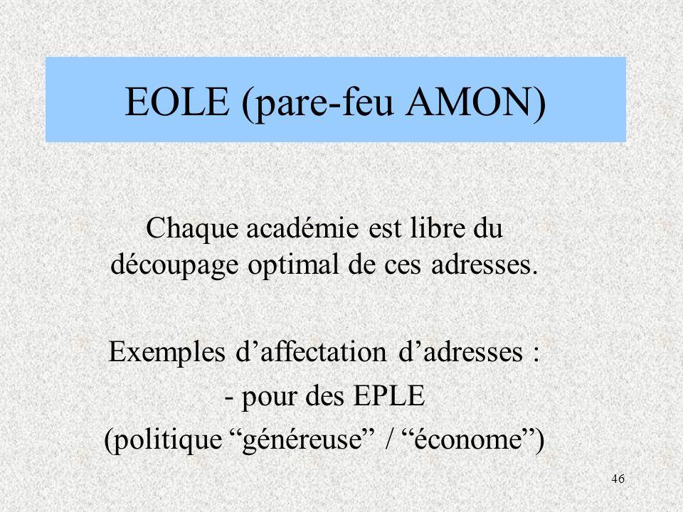 46 EOLE (pare-feu AMON) Chaque académie est libre du découpage optimal de ces adresses.