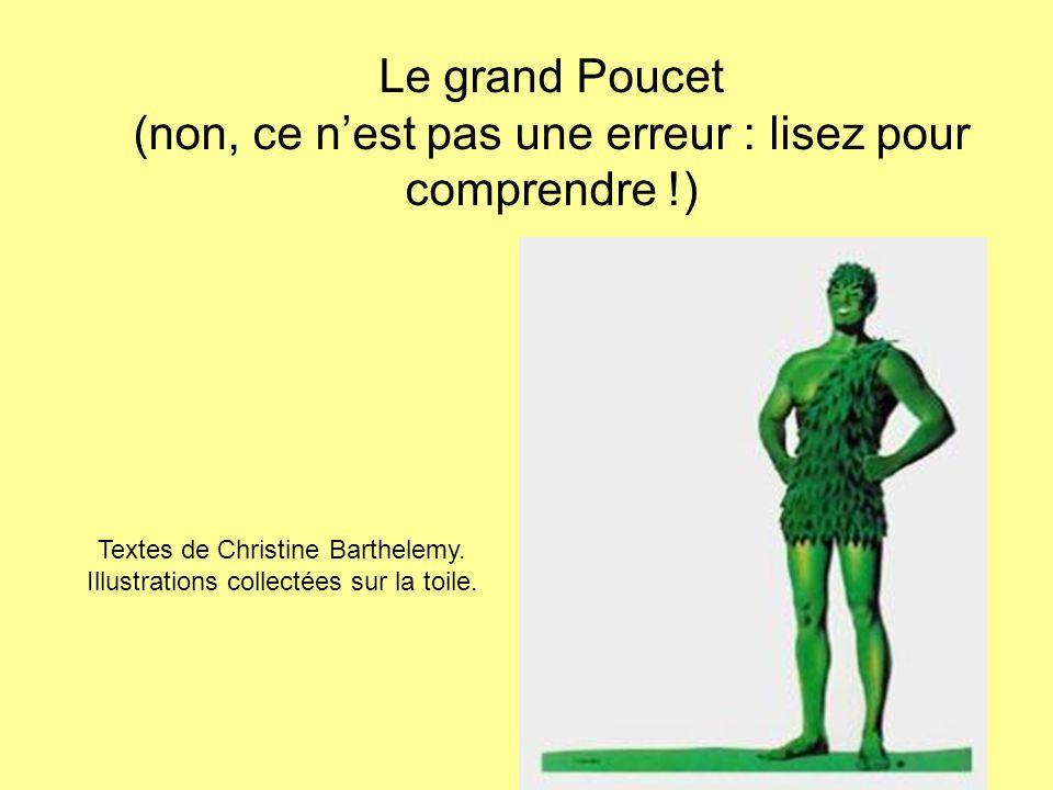 Le grand Poucet (non, ce n'est pas une erreur : lisez pour comprendre !) Textes de Christine Barthelemy.