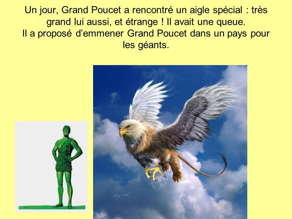 Un jour, Grand Poucet a rencontré un aigle spécial : très grand lui aussi, et étrange .
