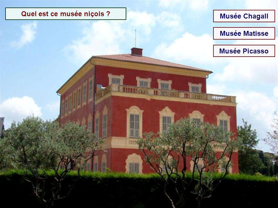 Où se trouve le musée Fernand Léger ? Biot Mougins Vence