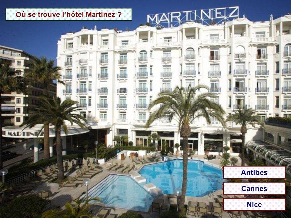 Où se trouve l'hôtel Negresco ? Antibes Cannes Nice