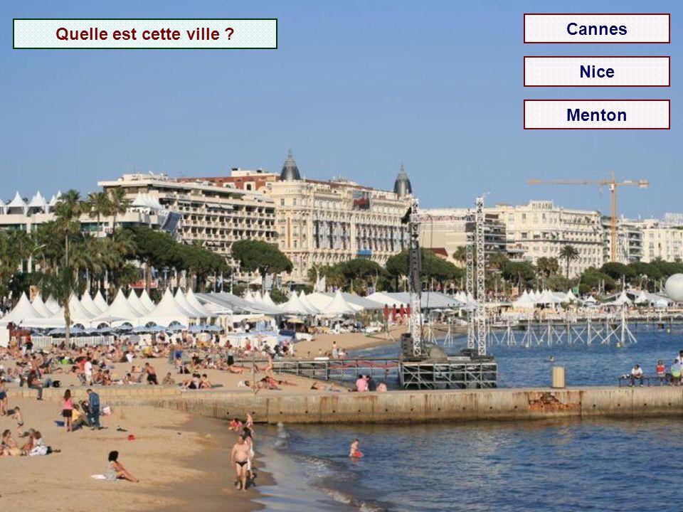 Quelle est cette rade ? Juan-les-Pins Roquebrune-Cap-Martin Villefranche-sur-Mer