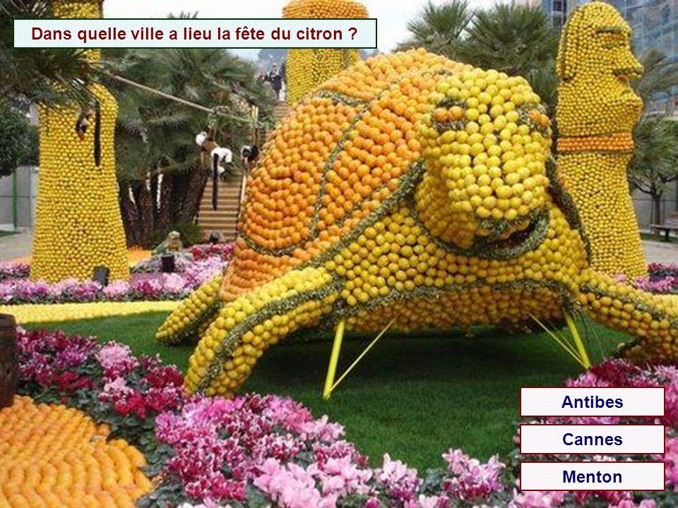 Dans quelle ville a lieu la fête du citron ? Antibes Cannes Menton