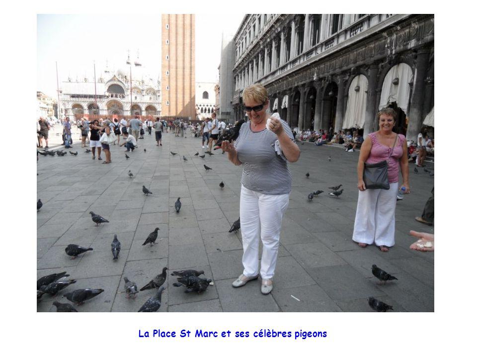 La Place St Marc et ses célèbres pigeons