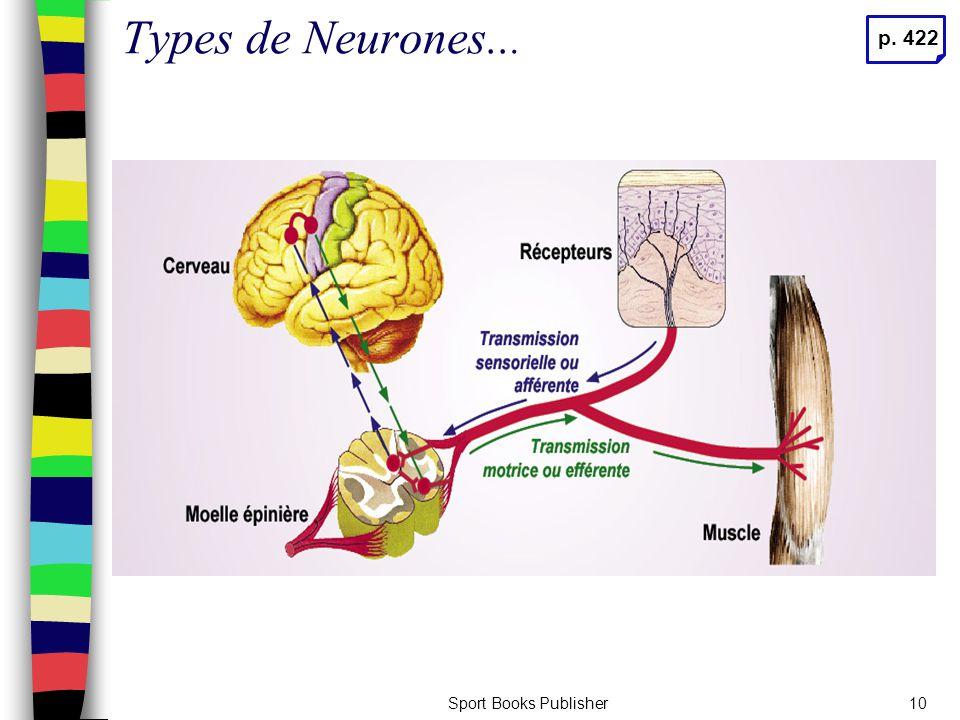 Sport Books Publisher10 Types de Neurones... p. 422
