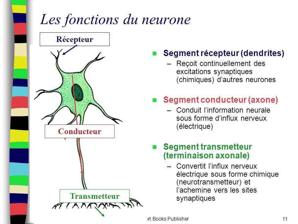 Sport Books Publisher11 Les fonctions du neurone Segment récepteur (dendrites) –Reçoit continuellement des excitations synaptiques (chimiques) d'autre