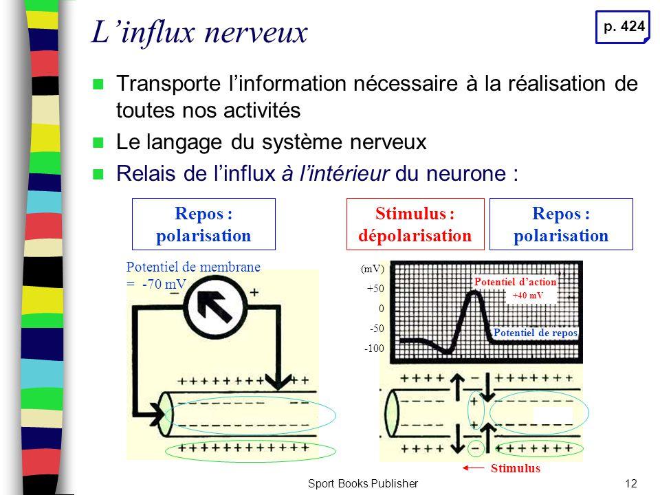 Sport Books Publisher12 L'influx nerveux Transporte l'information nécessaire à la réalisation de toutes nos activités Le langage du système nerveux Re