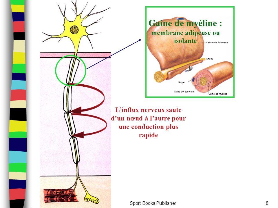 Sport Books Publisher8 Cellule de Schwann Axone Noyau Gaine de Schwann Gaine de myéline Gaine de myéline : membrane adipeuse ou isolante L'influx nerv