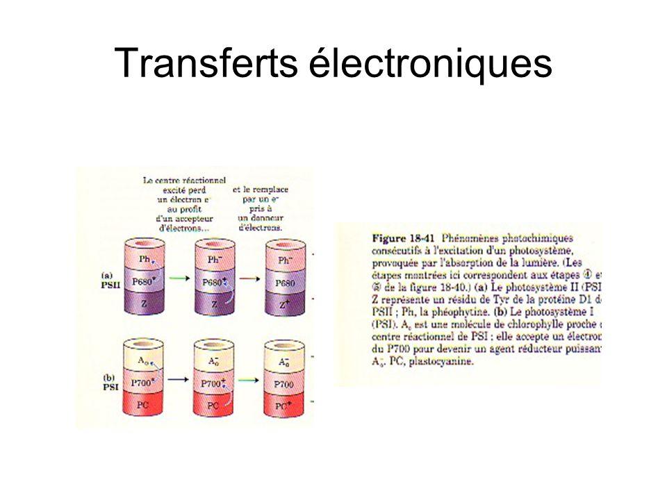 Transferts électroniques