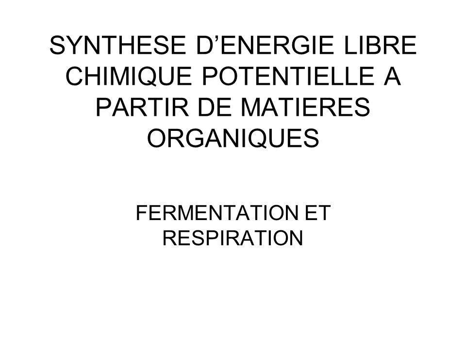 SYNTHESE D'ENERGIE LIBRE CHIMIQUE POTENTIELLE A PARTIR DE MATIERES ORGANIQUES FERMENTATION ET RESPIRATION