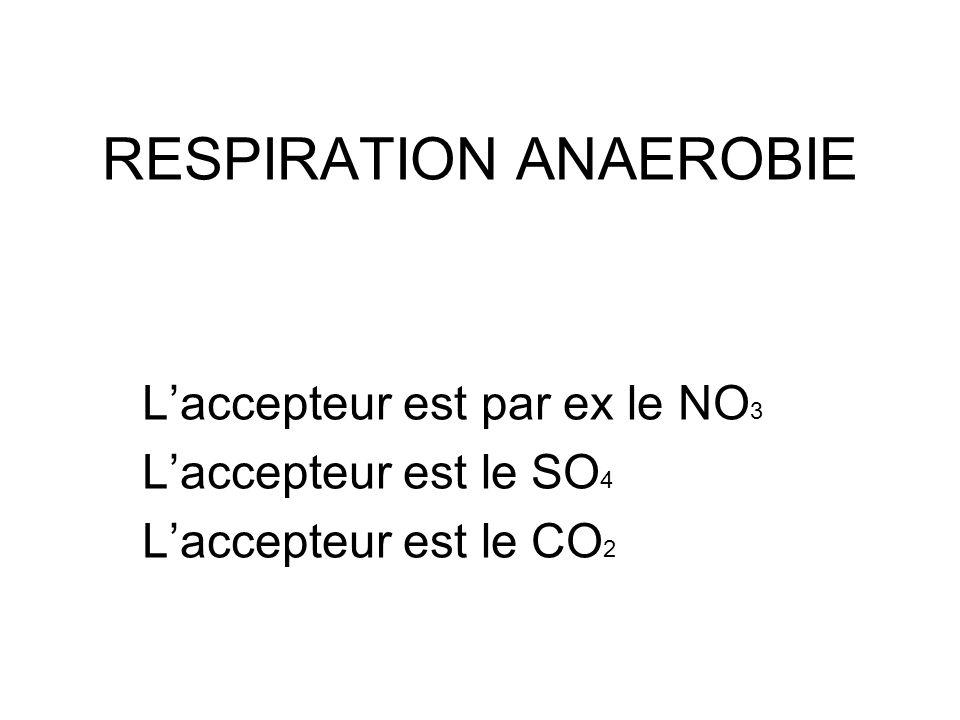 L'accepteur est le NO 3 Les bactéries utilisant le nitrate comme accepteur final d'électrons sont aérobie facultative et n'utilise cet accepteur qu'en l'absence d'oxygène : NO 3 + 2e + 2H ----> NO 2 + H 2 O 2NO 3 + 10e + 12H ----> N 2 + 6H 2 O 5CH 3 COOH + 8NO 3 ----> 10CO 2 + 4N 2 + 6H 2 O + 8OH