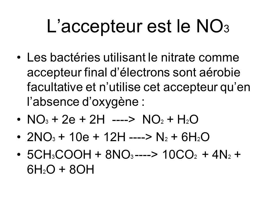 L'accepteur est le NO 3 Les bactéries utilisant le nitrate comme accepteur final d'électrons sont aérobie facultative et n'utilise cet accepteur qu'en
