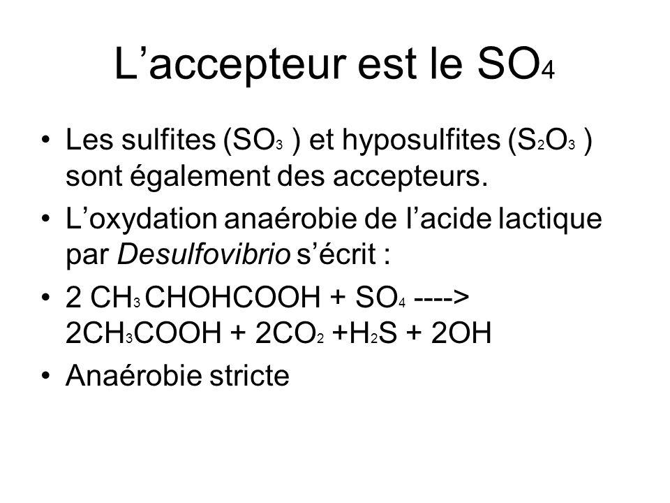 L'accepteur est le SO 4 Les sulfites (SO 3 ) et hyposulfites (S 2 O 3 ) sont également des accepteurs. L'oxydation anaérobie de l'acide lactique par D