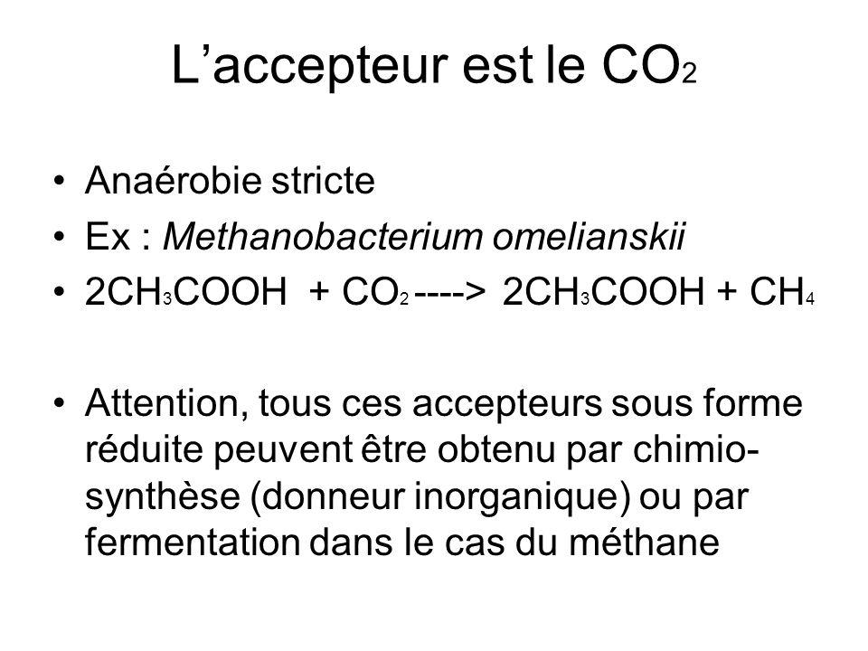 L'accepteur est le CO 2 Anaérobie stricte Ex : Methanobacterium omelianskii 2CH 3 COOH + CO 2 ----> 2CH 3 COOH + CH 4 Attention, tous ces accepteurs s