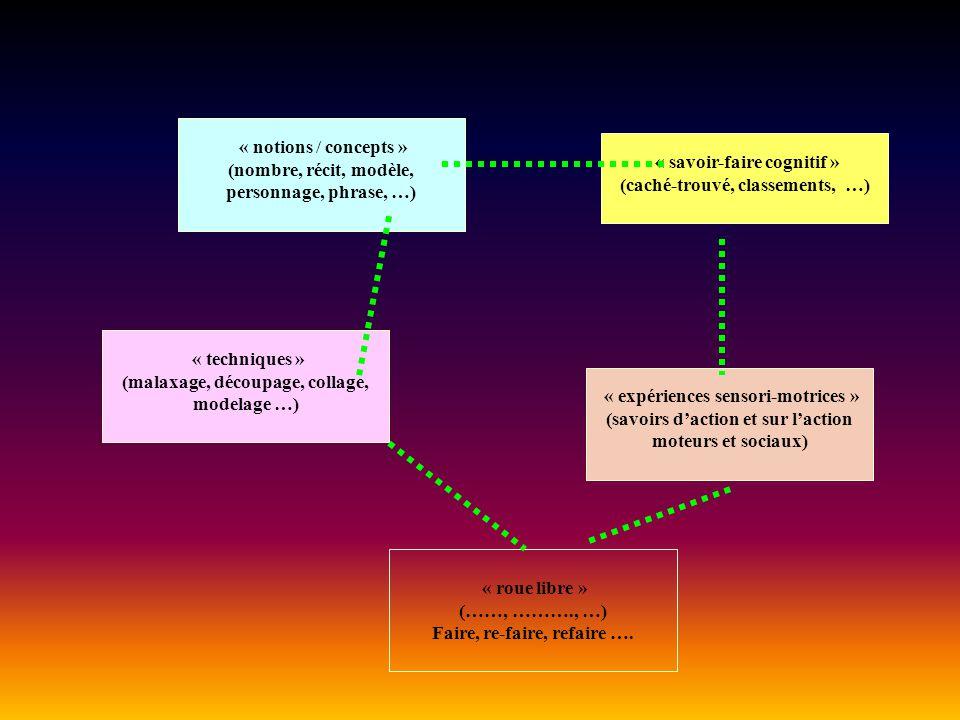 « notions / concepts » (nombre, récit, modèle, personnage, phrase, …) « savoir-faire cognitif » (caché-trouvé, classements, …) « expériences sensori-m