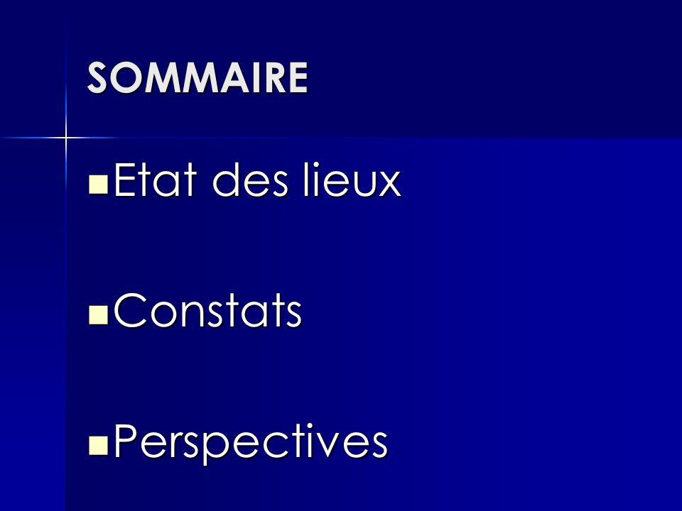 SOMMAIRE Etat des lieux Etat des lieux Constats Constats Perspectives Perspectives