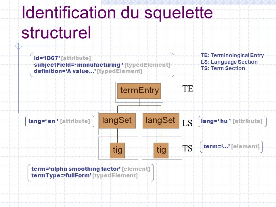 Identification du squelette structurel id='ID67' [attribute] subjectField=' manufacturing ' [typedElement] definition='A value…' [typedElement] lang=' hu ' [attribute] lang=' en ' [attribute] term='…' [element] term='alpha smoothing factor' [element] termType='fullForm' [typedElement] TE LS TS TE: Terminological Entry LS: Language Section TS: Term Section