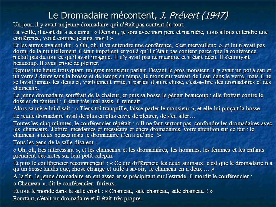 Le Dromadaire mécontent, J. Prévert (1947) Un jour, il y avait un jeune dromadaire qui n'était pas content du tout. La veille, il avait dit à ses amis