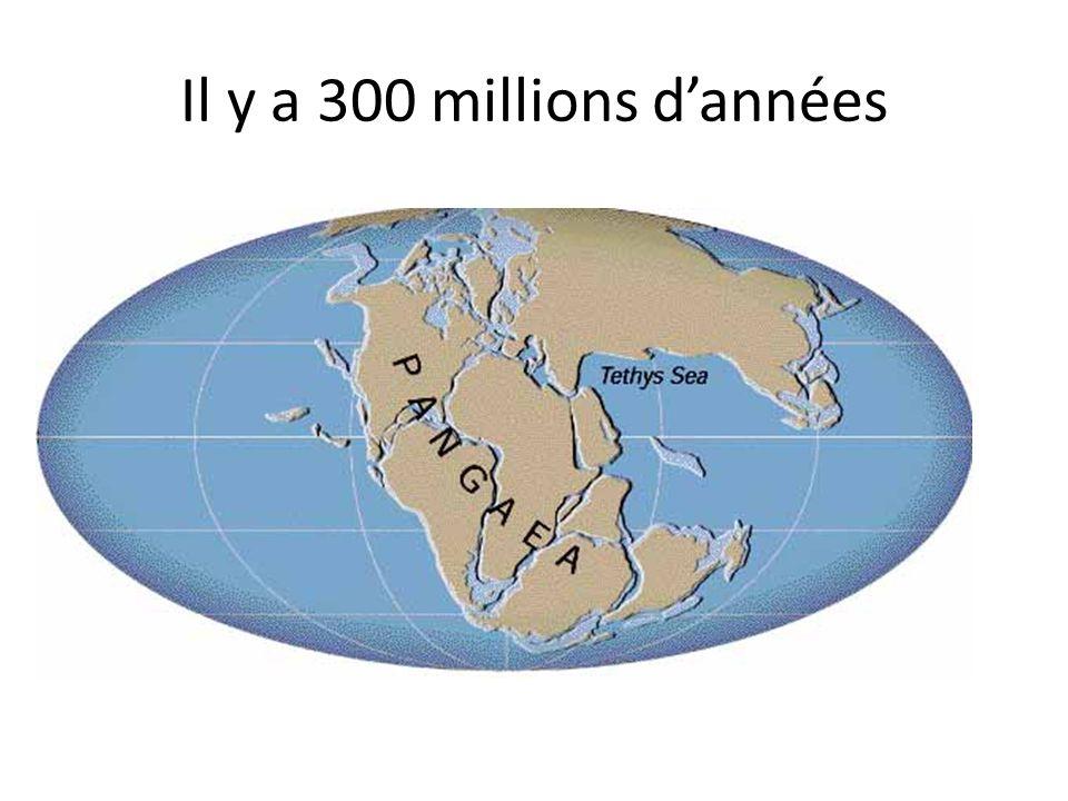 Il y a 300 millions d'années