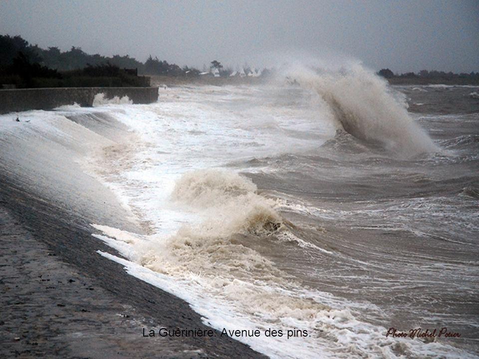 La Guérinière: le sable envahit la rouch' de mer –La cantine-