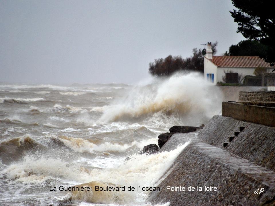 La Guérinière: Boulevard de l' océan -Pointe de la loire