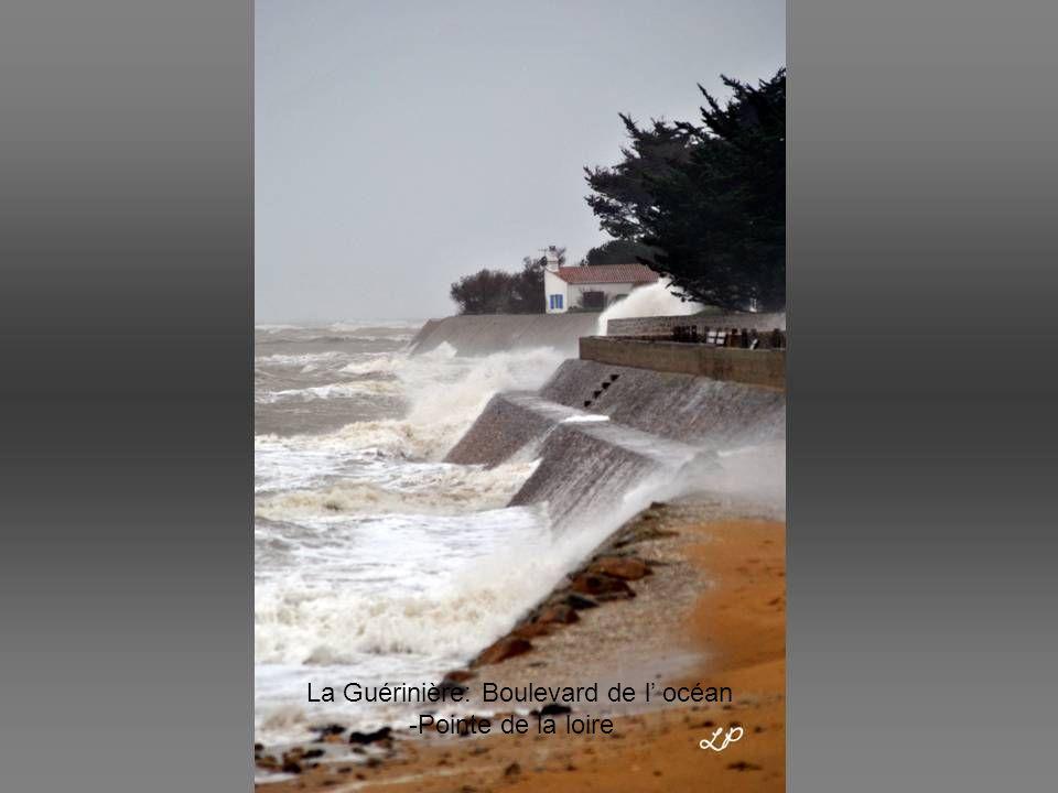 La Guérinière: Boulevard de l' océan –Pointe de la loire-