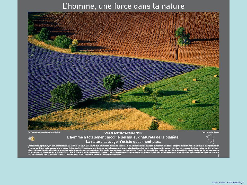 Franck Ardouin – IEN Strasbourg 7 Diapositive 3