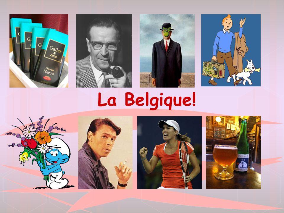  La Belgique est un petit pays avec une population de 10 millions  Elle est située au nord-est de France.