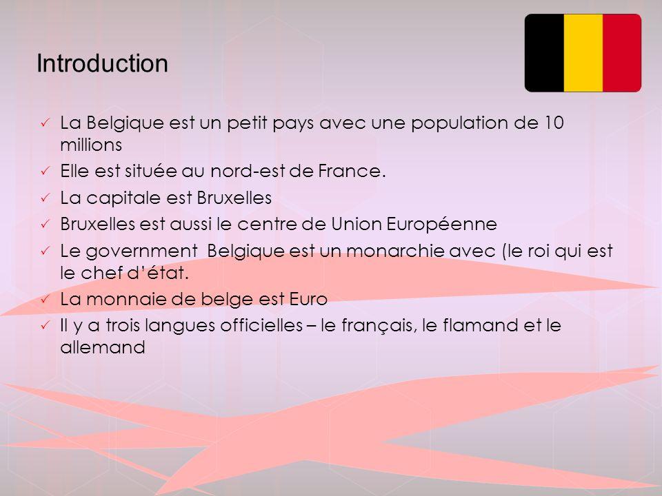 Division territoriale  La Belgique est composée de 3 régions  la Flandre – Nord-ouest, superficie13 522 km²  5 provinces, 308 communes (langue néerlandaise)  la Wallonie – Sud-est, superficie 16 844 km²  5 province, 253 communes (langue française)  la Région bruxelloise (Bruxelles-capitale) -  19 communes (bilingue – française – néerlandais)