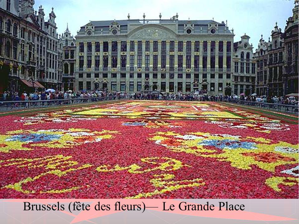 Maison du Roi - Brussels