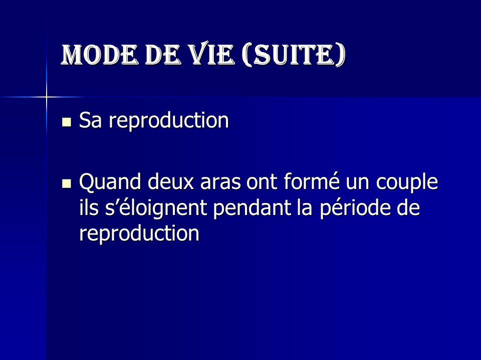 Mode de vie (suite) Sa reproduction Quand deux aras ont formé un couple ils s'éloignent pendant la période de reproduction