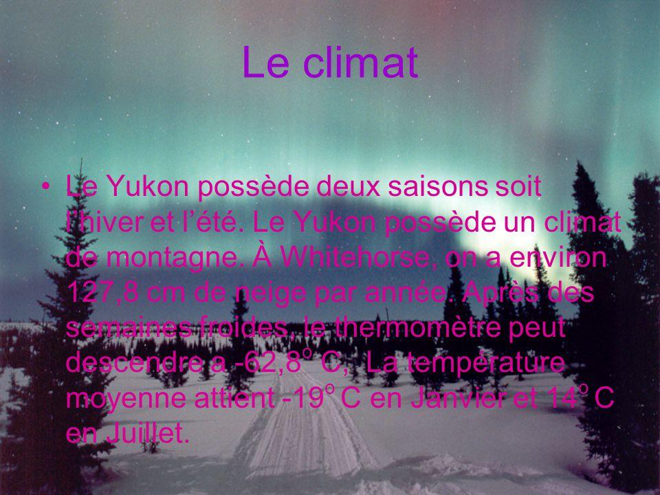 Le climat Le Yukon possède deux saisons soit l'hiver et l'été. Le Yukon possède un climat de montagne. À Whitehorse, on a environ 127,8 cm de neige pa