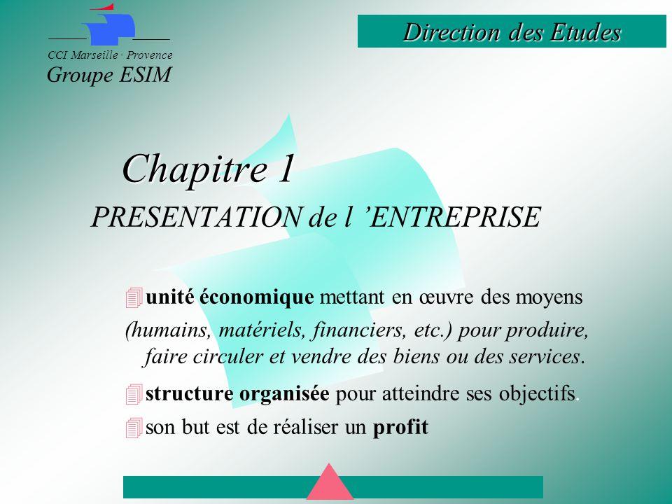 Direction des Etudes CCI Marseille · Provence Groupe ESIM –CLASSIFICATIONS et TYPOLOGIES environ 2,5 millions d entreprises françaises qui emploient environ 22 millions d actifs.