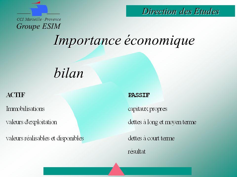 Direction des Etudes CCI Marseille · Provence Groupe ESIM Importance économique bilan