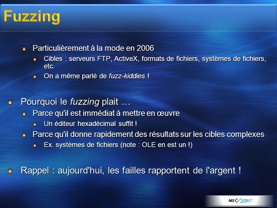 Particulièrement à la mode en 2006 Cibles : serveurs FTP, ActiveX, formats de fichiers, systèmes de fichiers, etc. On a même parlé de fuzz-kiddies ! P