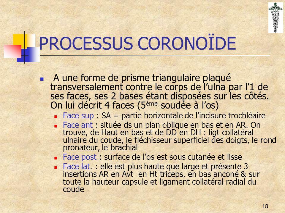 18 PROCESSUS CORONOÏDE A une forme de prisme triangulaire plaqué transversalement contre le corps de l'ulna par l'1 de ses faces, ses 2 bases étant di