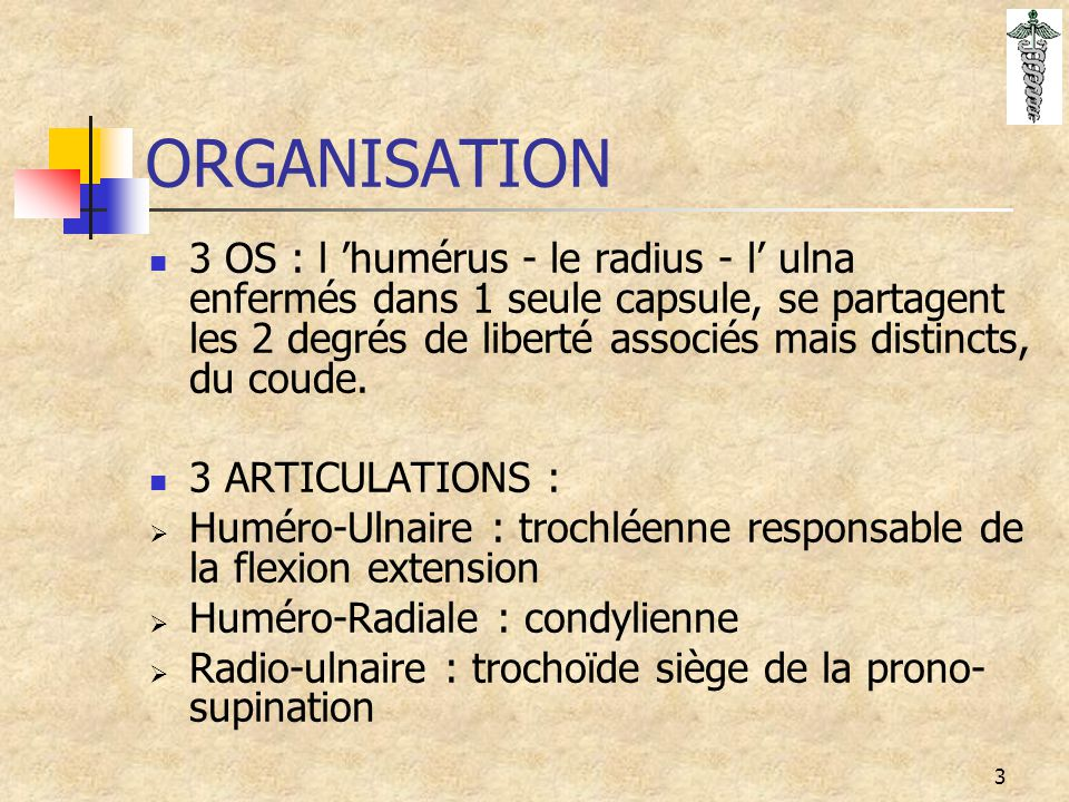 3 ORGANISATION 3 OS : l 'humérus - le radius - l' ulna enfermés dans 1 seule capsule, se partagent les 2 degrés de liberté associés mais distincts, du