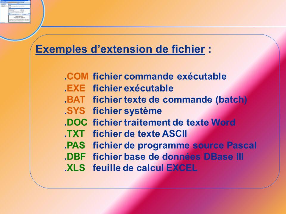 Exemples d'extension de fichier :.COMfichier commande exécutable.EXEfichier exécutable.BATfichier texte de commande (batch).SYSfichier système.DOCfich