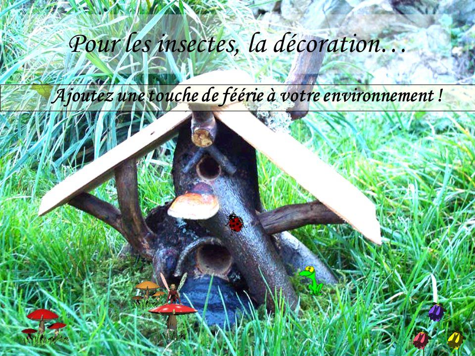 Pour les insectes, la décoration… Ajoutez une touche de féérie à votre environnement !