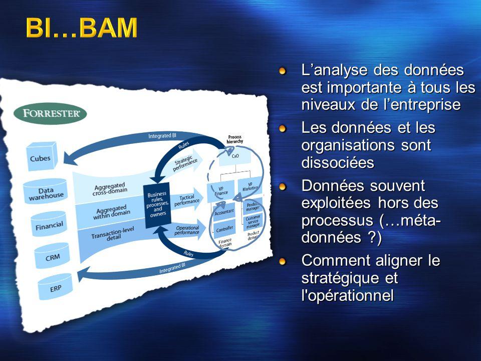 L'analyse des données est importante à tous les niveaux de l'entreprise Les données et les organisations sont dissociées Données souvent exploitées ho