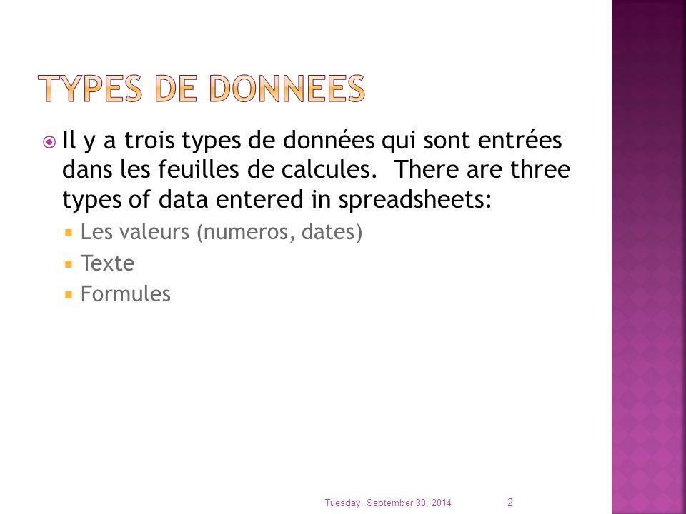 Il y a trois types de données qui sont entrées dans les feuilles de calcules. There are three types of data entered in spreadsheets:  Les valeurs (