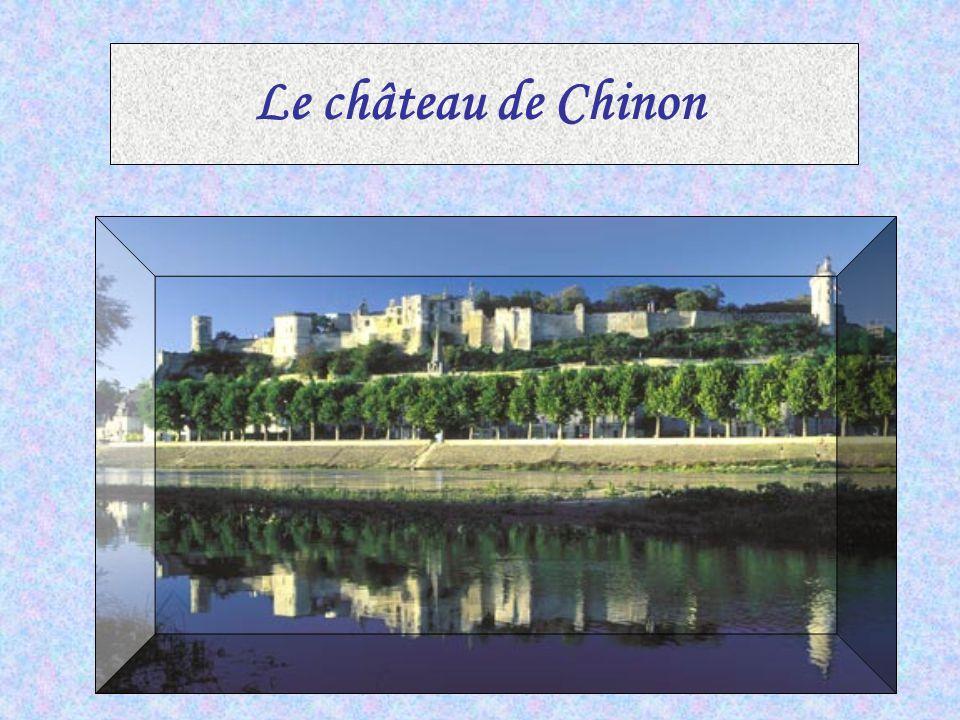 ………Le château de Blois VVéritable trésor de l'architecture française, la résidence Royale de Blois a accueilli dans ses murs, pendant quatre siècles