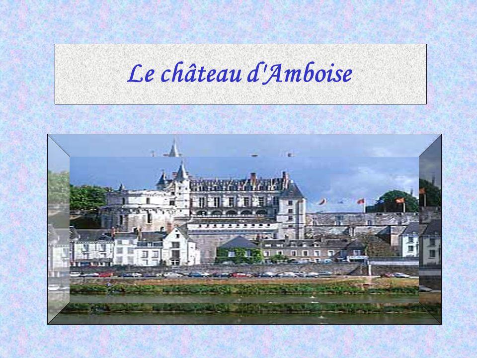 LL e Château de Chinon est une forteresse médiévale formidable (environ 400m de long sur 100m de large) qui surplombe la Vienne.